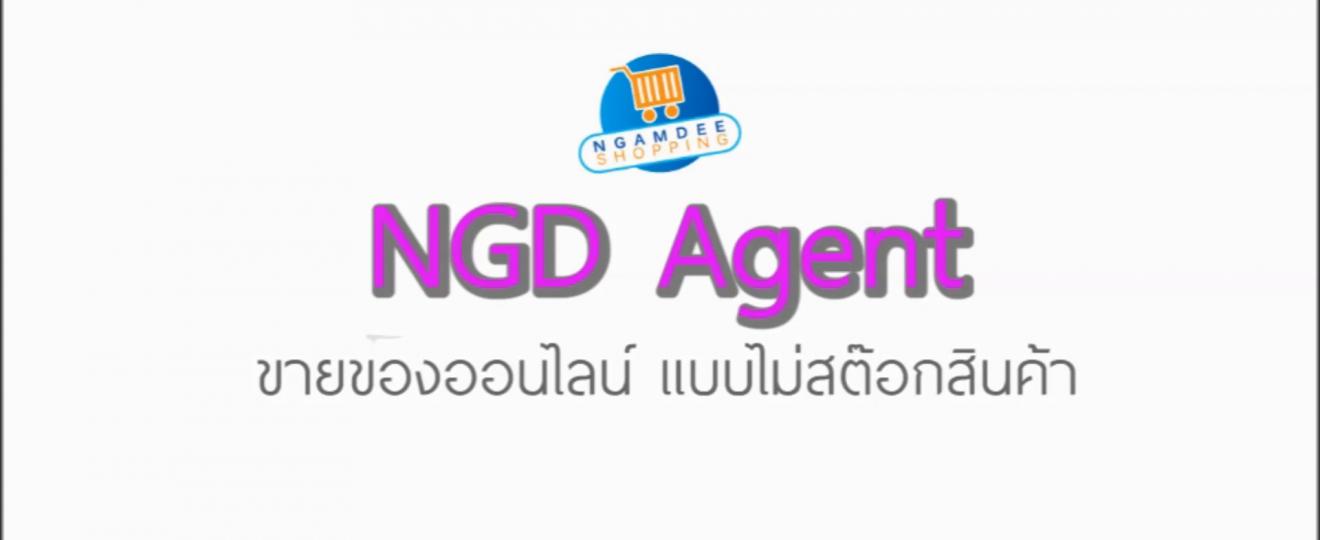 เอเย่นต์ขายของออนไลน์ NGD Agent